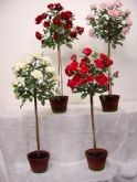 Topiary Rose Tree 55""